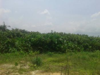 Prime Commercial Parcel of Land Measuring Approx.  22,000 Sqm, Obafemi Awolowo Way, Ikeja, Lagos, Commercial Land for Sale