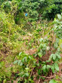 7½ Plots of Land at Affordable Price, Afam Power Road, Oyigbo, Rivers, Mixed-use Land for Sale