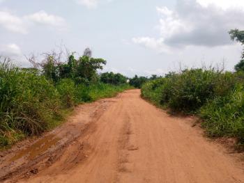 Strategic Mixed-use 1 Acre of Land Near Civilization & a Tarred Road, Osuntedo Labode Area Off Pade-arulogun Road., Moniya, Akinyele, Oyo, Mixed-use Land for Sale