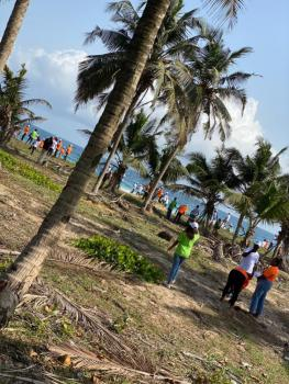 Secure an Amazing Luxury Beachfronts Land for Commercial Purposes., Less Than 10 Minutes Drive From Amen Estate, Solu Alade Area, Eleko, Ibeju Lekki, Lagos, Commercial Land for Sale