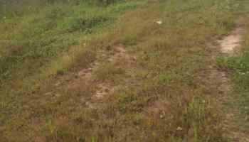 Vacant Parcel of Table Land Measuring 1380sqm, Alaka, Surulere, Lagos, Residential Land Joint Venture
