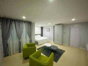 Tasteful One Bedroom Penthouse, Studio Apartment, Dr Adewale Oshin, Lekki Phase 1, Lekki, Lagos, Semi-detached Duplex Short Let