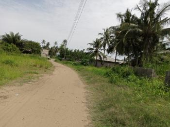 Government Approved Excision Land By The Road, Raymond Gate, Okun Ise, Lekki Free Trade Zone, Lekki, Lagos, Residential Land for Sale