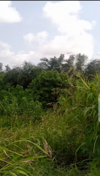 10 Acres of Land Along The Express Way, 7th Avenue/ Abule Ado, Festac, Amuwo Odofin, Lagos, Commercial Land for Sale