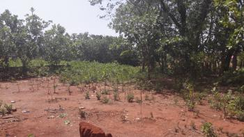 a Very Well Located Piece of Land with a Rapid Increase in Value., South West Extension Layout, Sabon Lugbe, Lugbe District, Abuja, Mixed-use Land for Sale