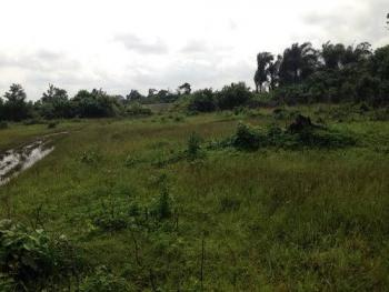 Lovely 2 Acres Cornerpiece Fenced and Gated Land, Lagasa Road, Eputu, Ibeju Lekki, Lagos, Mixed-use Land Joint Venture