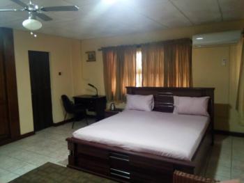 an Executive Luxury Ensuites Fully Furnished & Serviced 2 Bedroom Duplex, Ikeja Gra, Ikeja, Lagos, Semi-detached Duplex for Rent