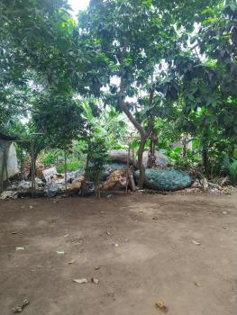 Virgin Full Plot of Land 60x120 with C of O, Unity Estate, Egbeda, Alimosho, Lagos, Land for Sale