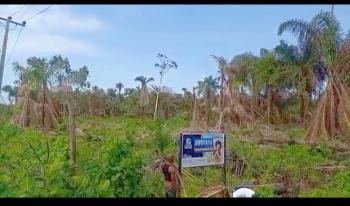 Land, Frontier Homes, Behind Mayfair Garden, Awoyaya, Ibeju Lekki, Lagos, Mixed-use Land for Sale