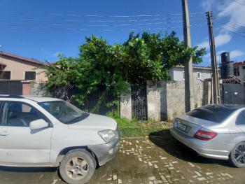 Well Located Dry Land Measuring 317sqm, Igbo Efon, Lekki, Lagos, Residential Land for Sale