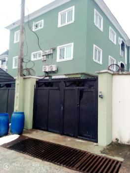 a Sharp Luxury and Tastefully 3 Bedrooms Flats, All Rooms Ensuite., Off Ayo Alabi Street, Oke-ira, Ogba, Ikeja, Lagos, House for Rent