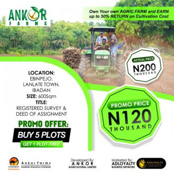 Farmland with Registered Survey, Lanlate, Ibadan, Oyo, Commercial Land for Sale