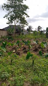 Strategically Located Undeveloped Parcel of Land, Ikot Akpan Abia, Off Stadium Road, Uyo, Akwa Ibom, Mixed-use Land for Sale