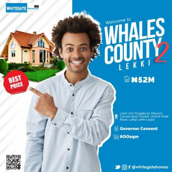 100% Dry Buy & Build Land, Whales Estate 2, Orchid Road, By Second Tollgate, Lekki Phase 2, Lekki, Lagos, Mixed-use Land for Sale