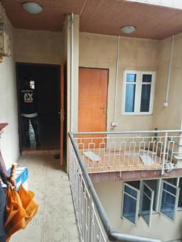 Nice and Spacious 3 Bedroom Ensuite Flat, Surulere, Lagos, Flat for Rent