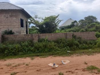 100ft By 100ft Corner Piece Land, with a Building, Okhoromi Community, Airport Road G.r.a, Benin, Oredo, Edo, Residential Land for Sale