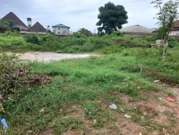 100ft By 100ft Dry Land in a Well Developed Area, Aruogba Community, Airport Road G.r.a, Benin, Oredo, Edo, Residential Land for Sale
