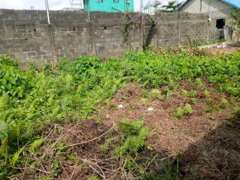 Half Plot of Land, Greenland Estate, Olorunshogo, Ojo, Lagos, Residential Land for Sale