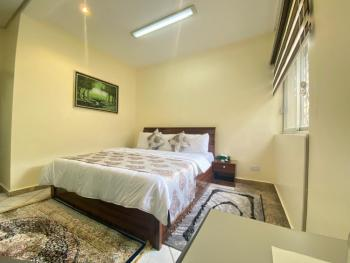 Luxury 1 Bedroom Apartment, Wuse 2, Abuja, Self Contained (single Rooms) Short Let
