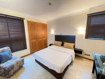 Super Luxury 1 Bedroom Apartment, Lekki Phase 1, Lekki, Lagos, Mini Flat Short Let