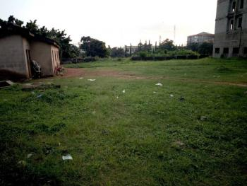 100 By 100, Close to Redeemed Junction, Okpanam Road, Asaba, Delta, Residential Land for Sale