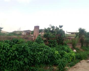 1110sqm of Leveled Land, Bodi Wasim, Orita Bashorun, Ibadan, Oyo, Mixed-use Land for Sale