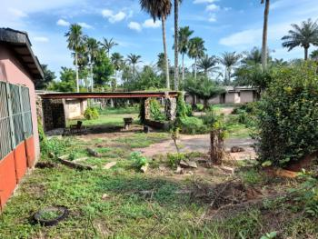 200ft By 200ft Dry Land with C.of.o, Country Home Road, Agip Junction, Sapele Road, Benin, Oredo, Edo, Commercial Land for Sale