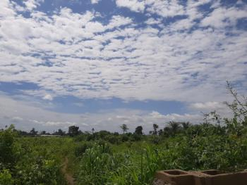 Affordable Land Near International Breweries and Other Factories, Orile Imo, Mowe Ofada, Ogun, Mixed-use Land for Sale