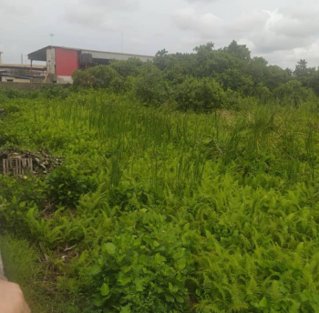 2443.80sqm of Commercial Land in a Good Location, Industrial Commercial Scheme, Amuwo Odofin, Lagos, Commercial Land for Sale