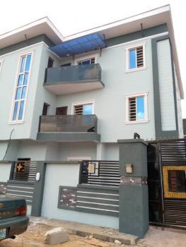 Tastesfully Built Newly Built Mini Flat Pop Ceiling, Baruwa, Ipaja, Lagos, Mini Flat for Rent