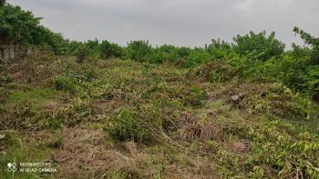Most Affordable and Accessible Estate Land in Good Location, Unity Estate, Badore, Ajah, Lagos, Residential Land for Sale
