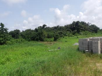 Own Residential Plots in This Fast Developing Area, Havilah Cottage, Akodo Ise, Ibeju Lekki, Lagos, Residential Land for Sale