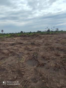 an Excellent and Affordable Land Property, Ilara, Igbonla, Epe, Lagos, Mixed-use Land for Sale