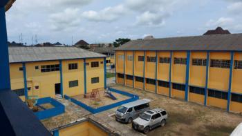 Functional School, Festac, Amuwo Odofin, Lagos, School for Sale
