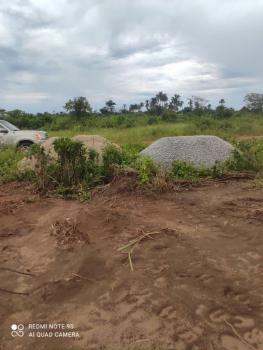 Very Cheap Super 100% Dry Land in The Fastest Growing Area, Ilara, Igbonla, Epe, Lagos, Mixed-use Land for Sale