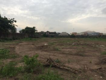 Strategically Located 2 Plots of Land on a Tarred Road, Marriam Babangida, Asaba, Delta, Commercial Land for Sale