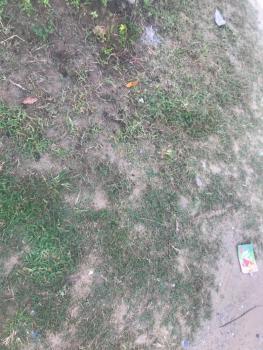 10 Plots of Land, Orchid Hotel Road, Ikota, Lekki, Lagos, Land for Sale