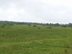 Plots of Land, Ibeju Lekki, Lagos, Mixed-use Land for Sale