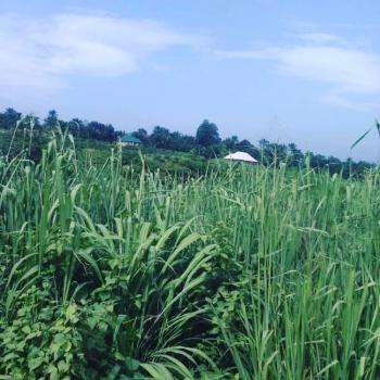 200 Plots of Land, Owerri -onitsha Express Road Close to Sea Horse Company, Anambra, Anambra, Mixed-use Land for Sale