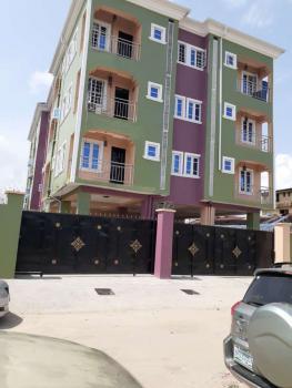 a Newly Built Standard Mini-flat Available, Lawanson, Surulere, Lagos, Mini Flat for Rent