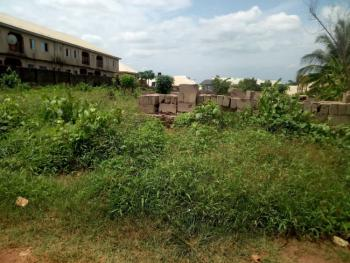 Strategically Located 100 By 200 Land, Fenced and Gated, Dbs, Asaba, Delta, Mixed-use Land for Sale