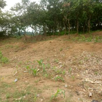 Residential Land with C of O, By Paradise Estate Junction, Life Camp, Abuja, Residential Land for Sale