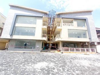 Brand New Commercial Shop Spaces, Lekki Phase 1, Lekki, Lagos, Shop for Sale