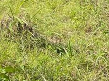 Plot Measuring 1,476.337sqm, Osborne Phase 2, Ikoyi, Lagos, Mixed-use Land for Sale