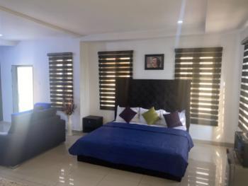 Studio Apartment, Chevron Alternative Route, Lekki, Lagos, Self Contained (single Rooms) Short Let