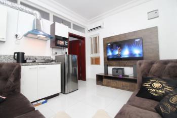 One Bedroom Flat, Pent Floor + Pool, Gym, Olubunmi Owa Same Street with Ebeano, Lekki Phase 1, Lekki, Lagos, Mini Flat Short Let