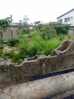 2 Plots Together with Perfect Title Documents, Off Salami Street, By Pedro Police Station., Pedro, Gbagada, Lagos, Land for Sale