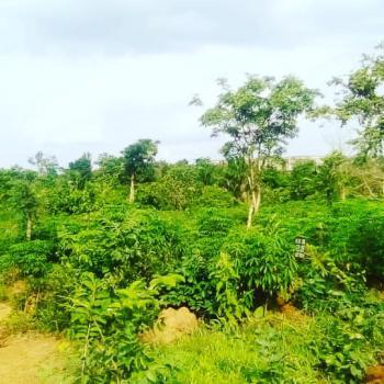 Plots of Land, Rabbi Layout Neke Uno, Enugu, Enugu, Mixed-use Land for Sale
