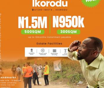 100% Dry Land in an Beautiful Environment Estate, Atere, Imota, Ikorodu, Lagos, Mixed-use Land for Sale