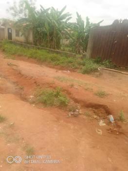 2 Plots of Land with Survey, Agunfoye Area Igbogbo, Agric, Ikorodu, Lagos, Mixed-use Land for Sale